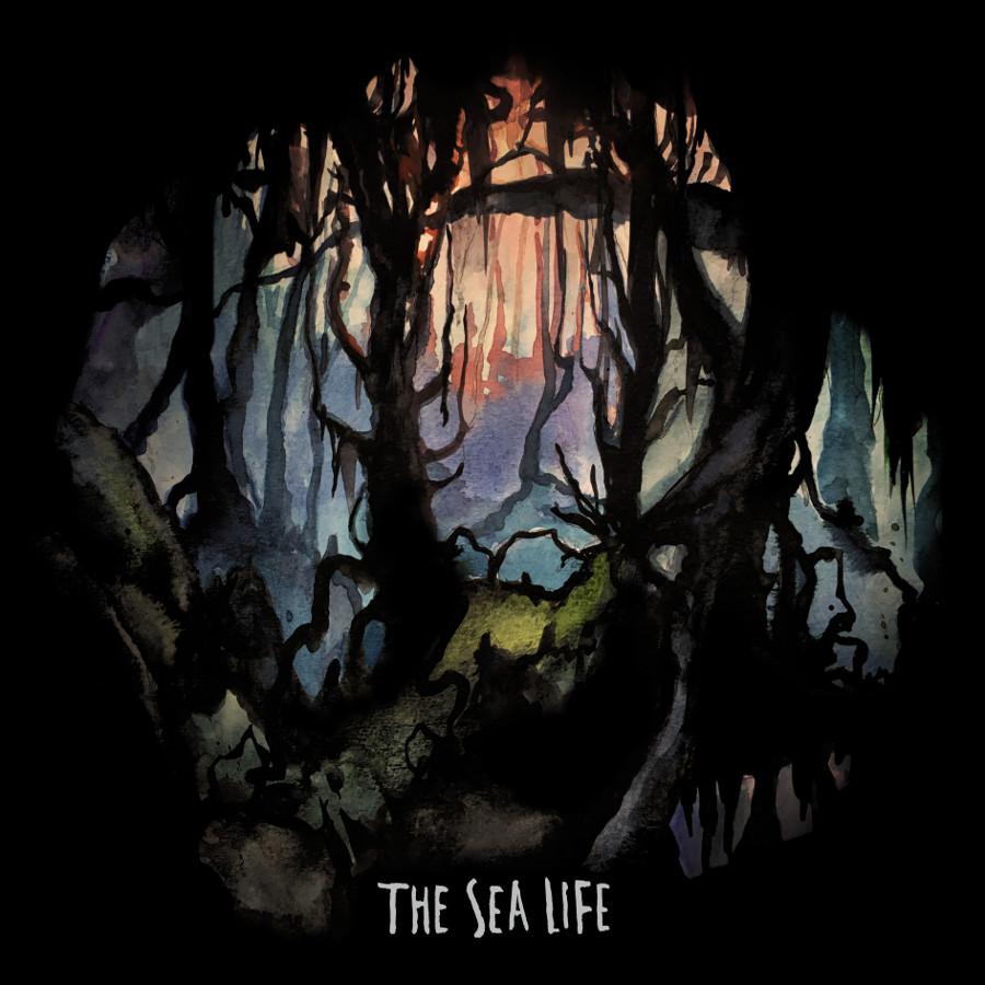 The Sea Life – The Sea Life