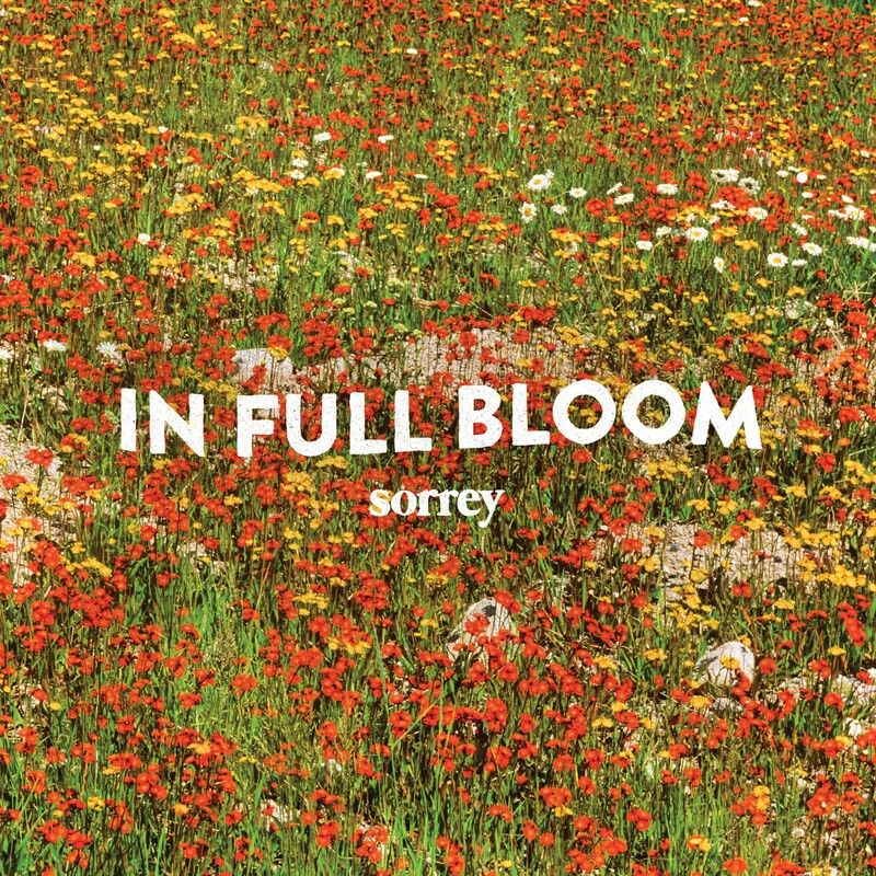 Sorrey – In Full Bloom