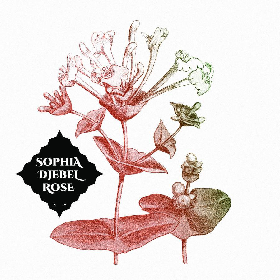 Sophia Djebel Rose – Sophia Djebel Rose
