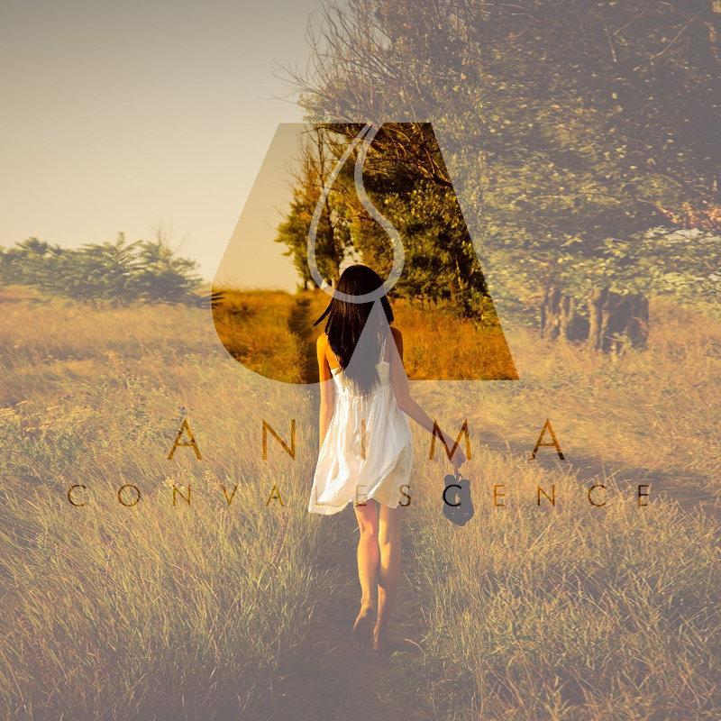 Anima – Convalescence